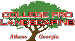 College Pro Landscaping