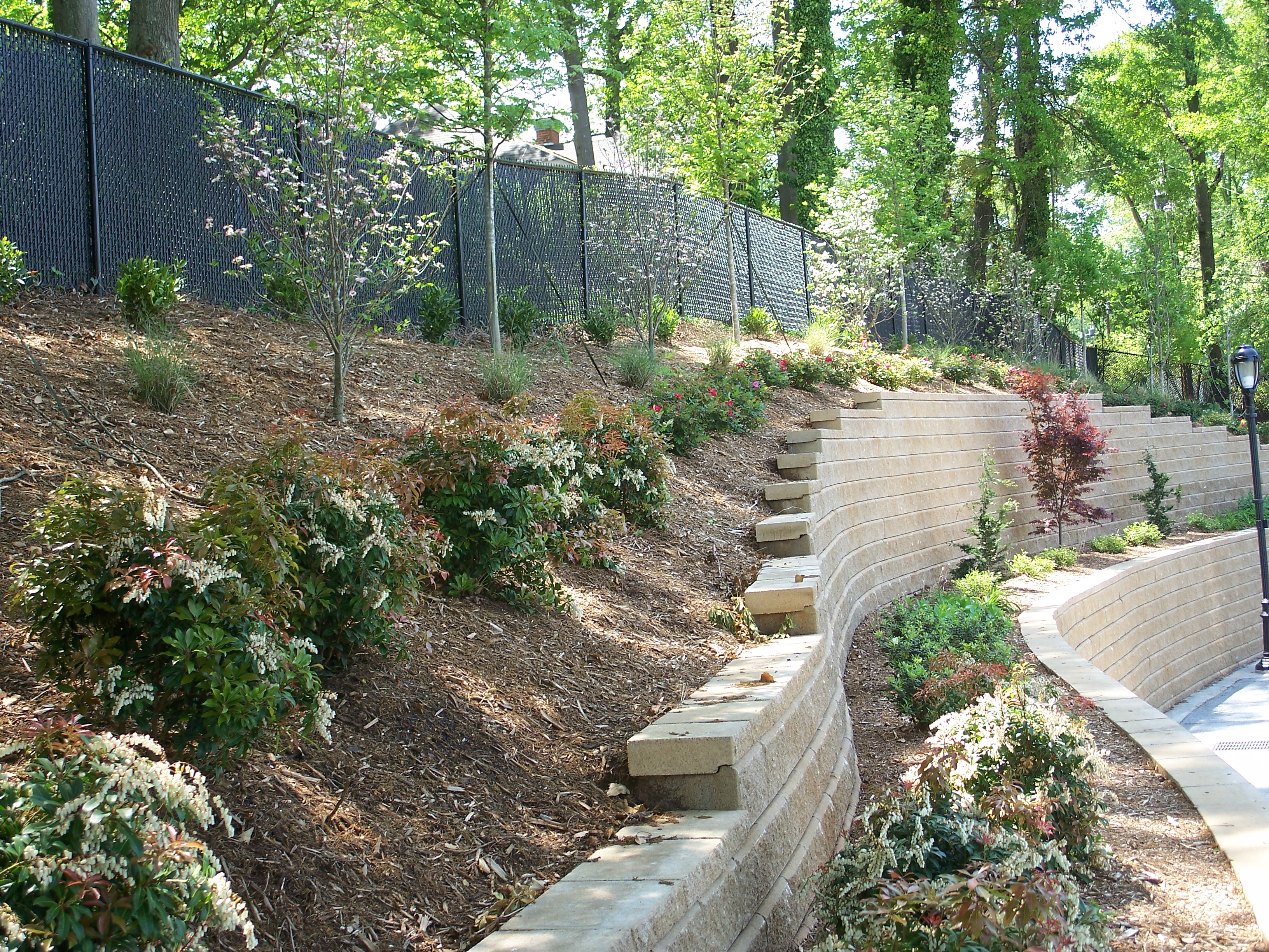 Landscapers And Lawn Care In Athens Ga College Pro