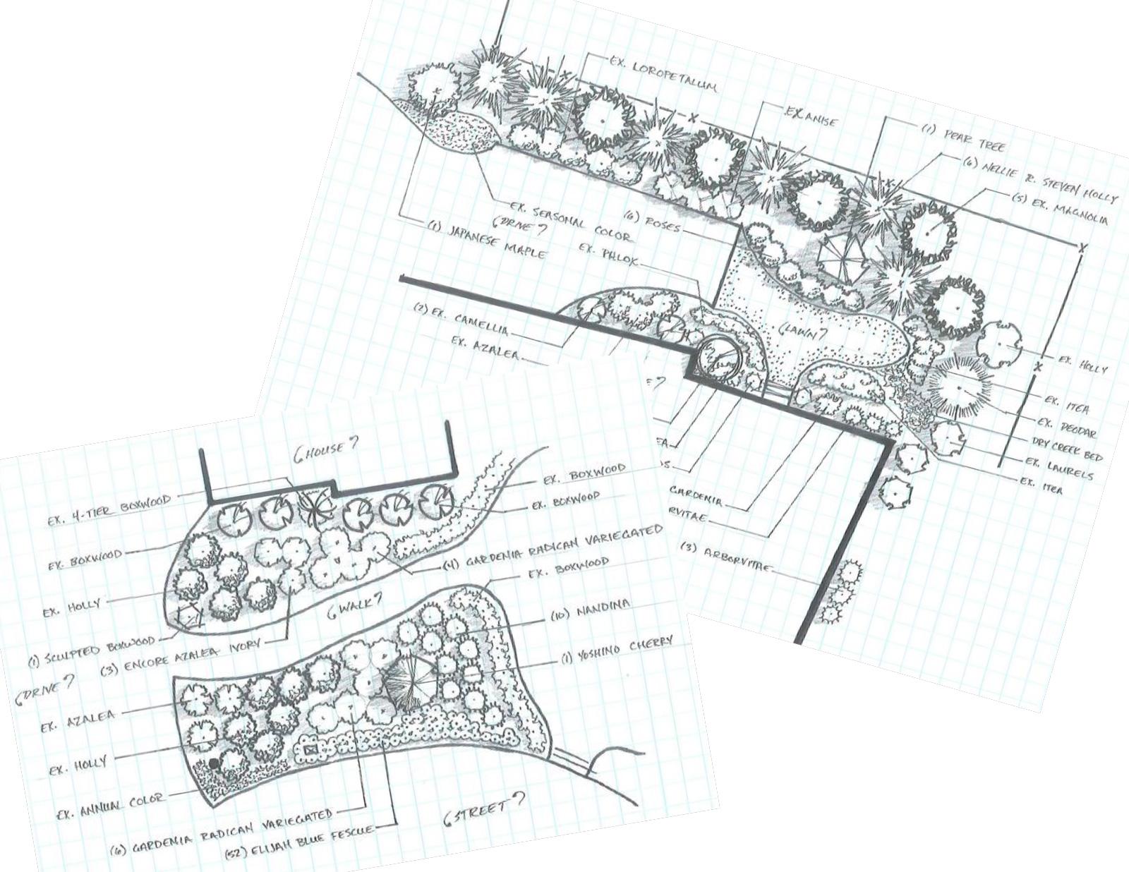 Handsketch-planting-plans